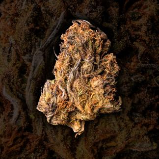 Sour Space Candy – Fields of Hemp